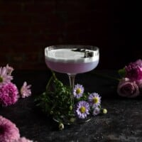 Lavender Gin sour with Empress 1908 Gin